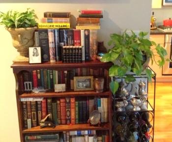 grandmas-attic-plants